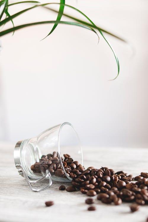 heerlijke koffie drinken